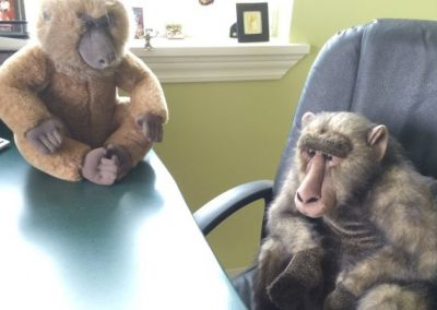 Peaceable Primate's first inhabitants are stuffed toys