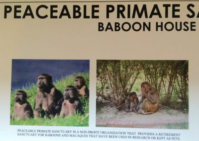Plans for the baboon houses at Peaceable Primate Sanctuary