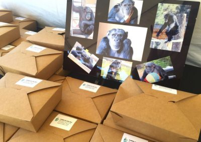 Yummy vegan lunches provided by Chimpanzee Sanctuary Northwest