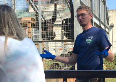 NAPSA's Steering Committee learned how Chimp Haven staff use positive reinforcement training to care for their chimpanzees.