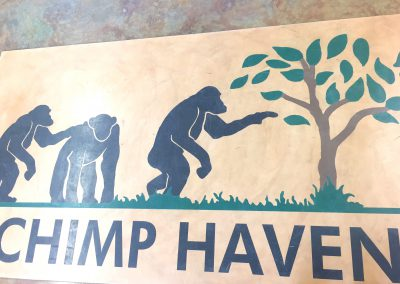 We arrived at Chimp Haven!