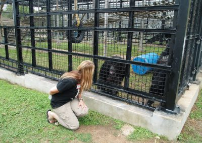 Brooke Chavez bonding with a chimpanzee at Primarily Primates