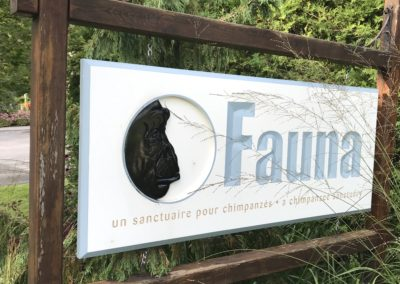 Welcome to Fauna Foundation!